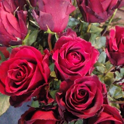 51 роза эксплорер 90см 1 категории: букеты цветов на заказ Flowwow