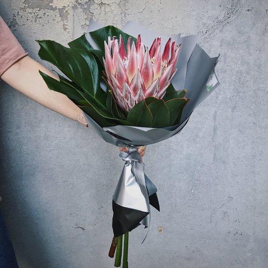 Букет из протеи: букеты цветов на заказ Flowwow