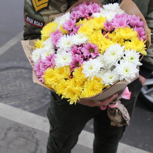 15 разноцветных хризантем