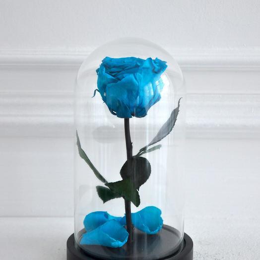 Роза в колбе мини Завтрак у Тиффани: букеты цветов на заказ Flowwow