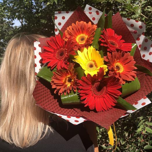 Королевская гербера: букеты цветов на заказ Flowwow