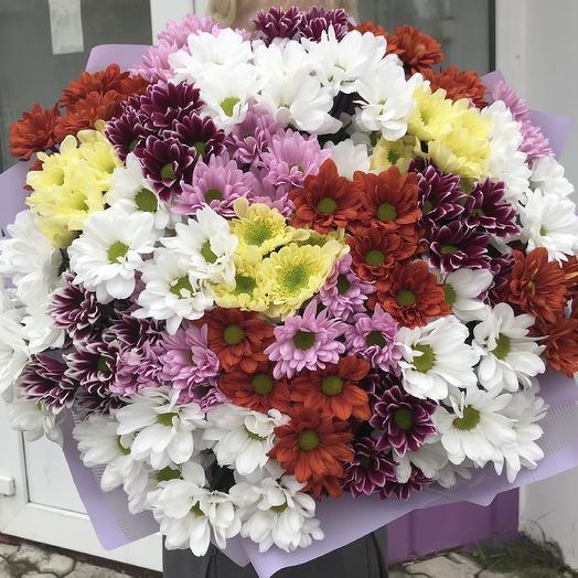 An immense field: flowers to order Flowwow