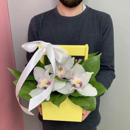 Интерьерный ящичек с Орхидеей: букеты цветов на заказ Flowwow