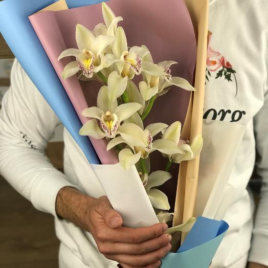 Монобукеты. Орхидеи N76