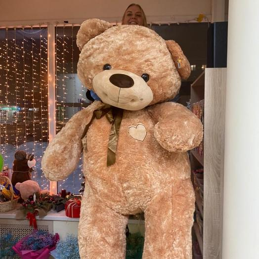 Медведь гигант