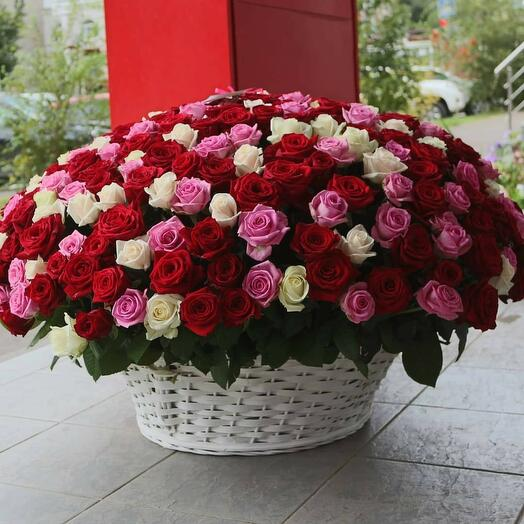 Розы в корзине 101
