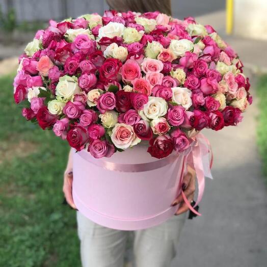 205 роз в коробке
