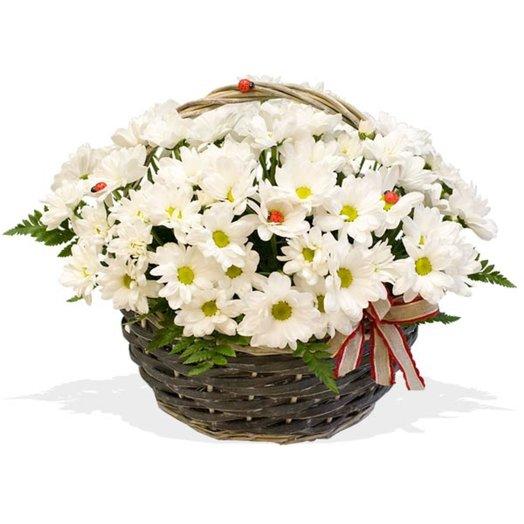 Корзинка из хризантем На полянке: букеты цветов на заказ Flowwow