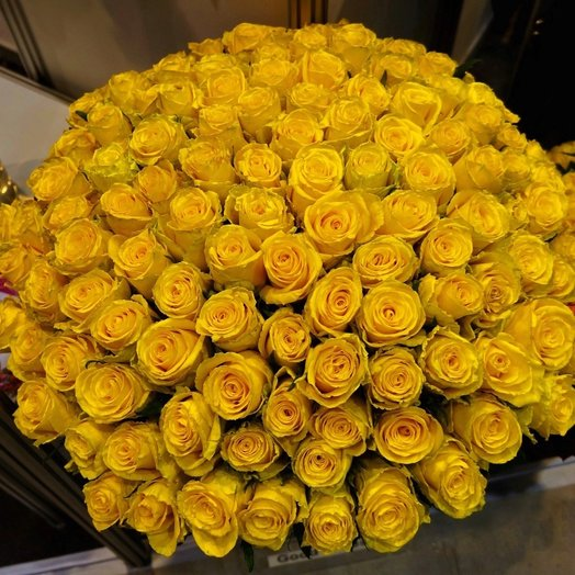 101 Желтая Эквадорская Роза 80см