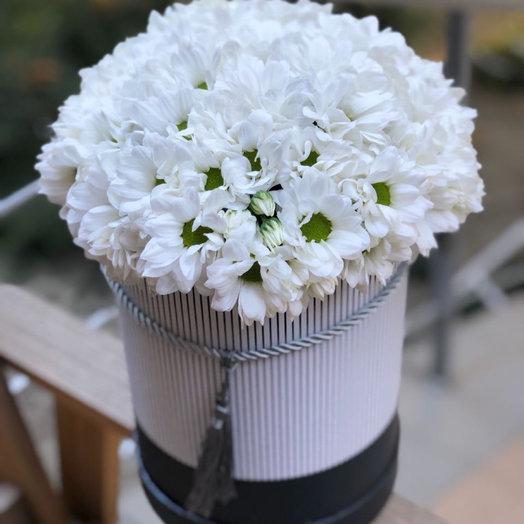 Коробочка с хризантемой