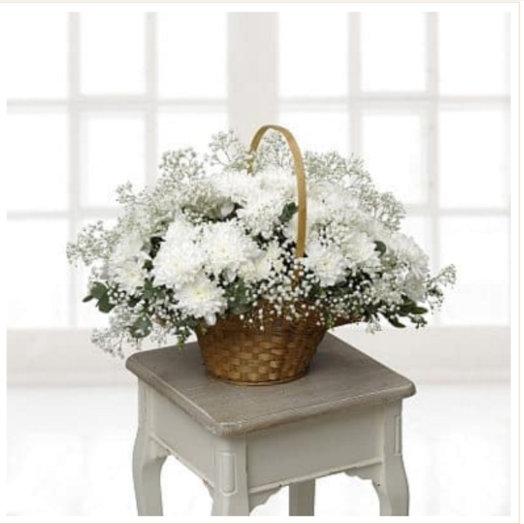 Хризантема в корзине: букеты цветов на заказ Flowwow