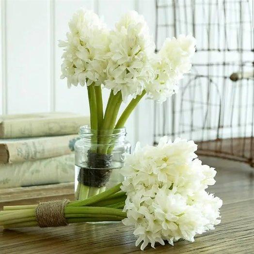 5 белоснежных гиацинтов: букеты цветов на заказ Flowwow