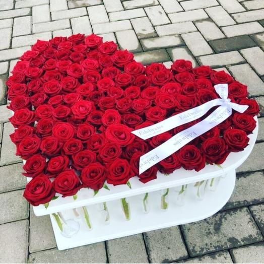 101 красная Эквадорская роза в стойке с пробирками