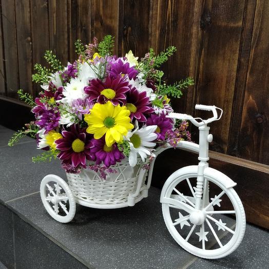 Велосипед: букеты цветов на заказ Flowwow