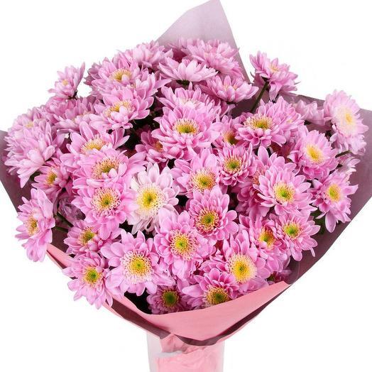 7 розовых хризантем
