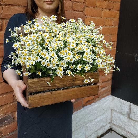 По большому секрету: букеты цветов на заказ Flowwow