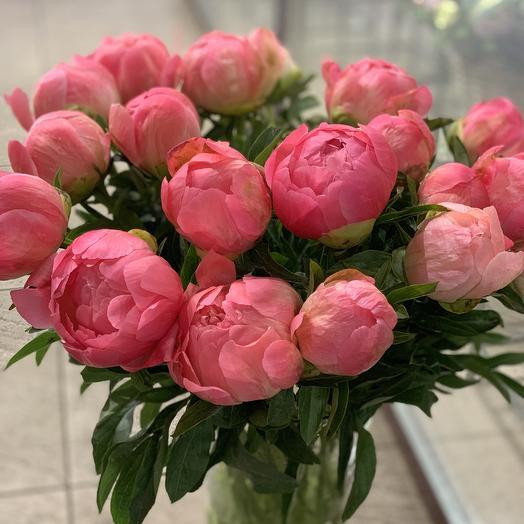 Пионы Корал Сансет: букеты цветов на заказ Flowwow