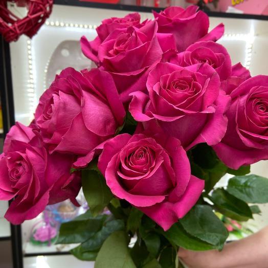 Розы эквадорские сорт «Pink Floyd