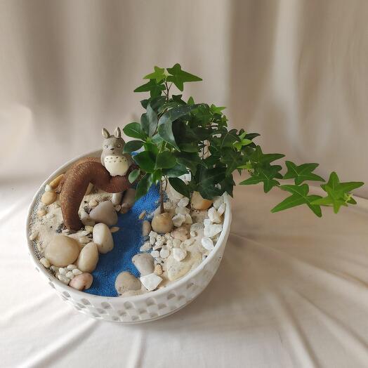 Мини-садик Тороро над рекой