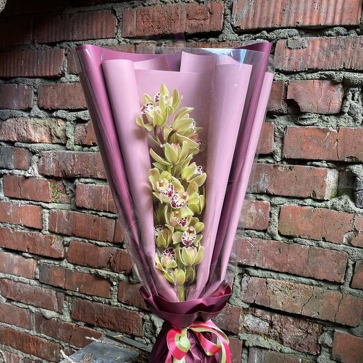Красотка орхидея