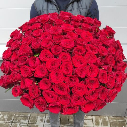 Букет из 101 красной розы Рэд наоми - Акция