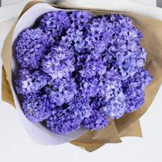 25 гиацинтов в стильной упаковке: букеты цветов на заказ Flowwow