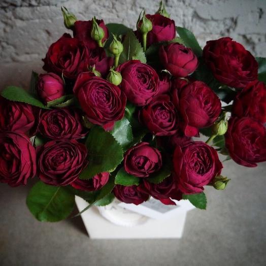 Кустовая Пионовидная роза Руби Бижу / 11 шт: букеты цветов на заказ Flowwow