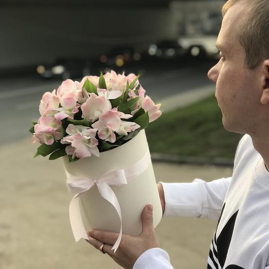 Розовый дендробиум: букеты цветов на заказ Flowwow