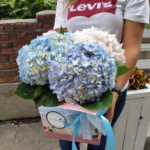Коробка с гортензиями: букеты цветов на заказ Flowwow