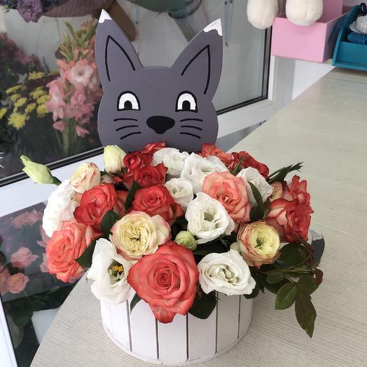 Котик: букеты цветов на заказ Flowwow
