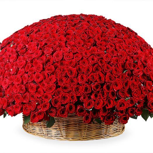 Сказочный подарок: букеты цветов на заказ Flowwow