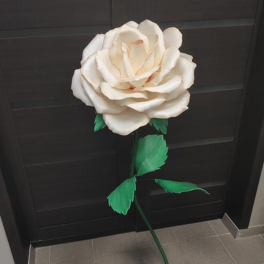Цветок интерьерный: букеты цветов на заказ Flowwow