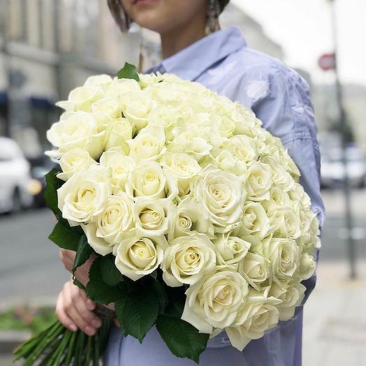 Акция! 51 белая роза (точно свежая)