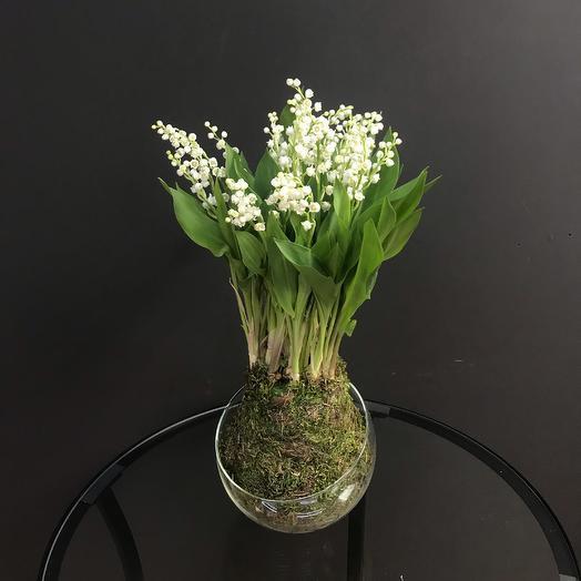 Ландыши во мхе: букеты цветов на заказ Flowwow