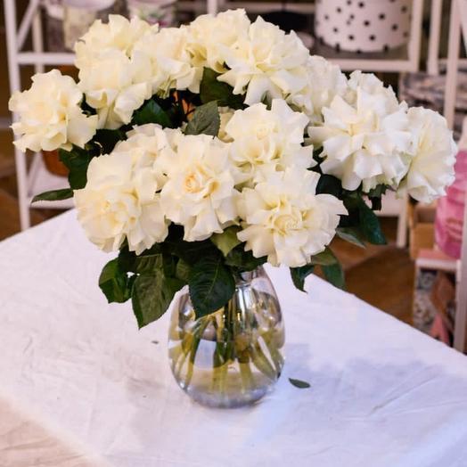 Очарование французских роз