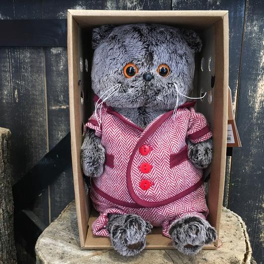 Кот Басик в костюме