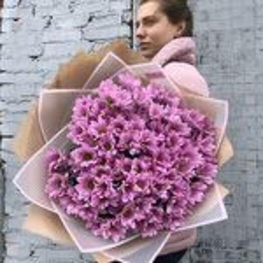 Нежный букет фиолетовых хризантем 0004