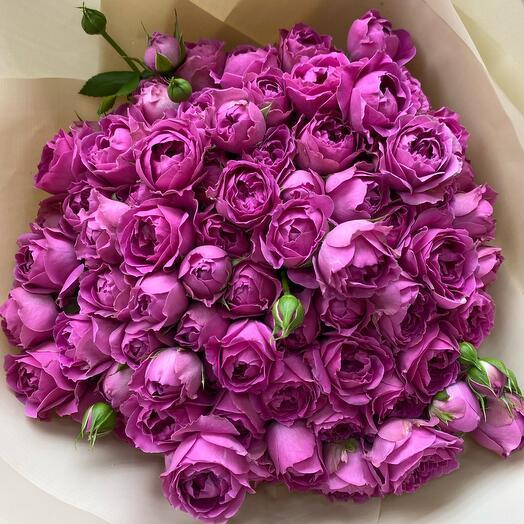 Кустовые пионовидные розы Мисти