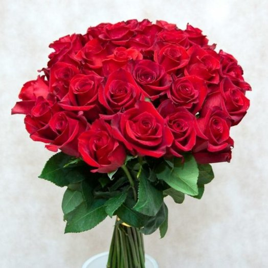 Букет из 25 эквадорских роз: букеты цветов на заказ Flowwow