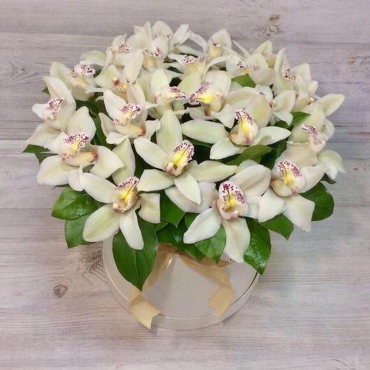Большая коробка с орхидеей: букеты цветов на заказ Flowwow