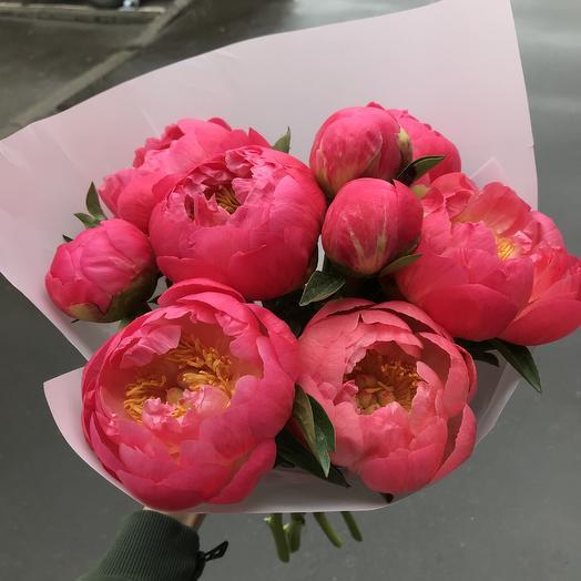 Малиновые пионы 💕: букеты цветов на заказ Flowwow