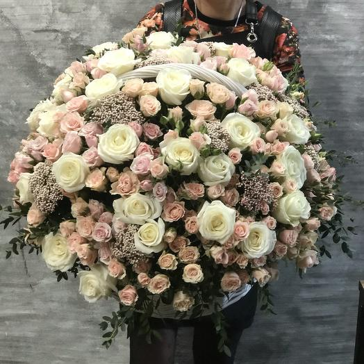 Нежная Корзина из роз и озотамнуса