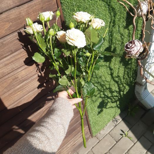 Кустовая роза 80 см