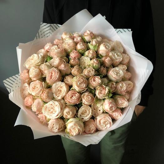 Букет из пионовидных роз Бомбастик