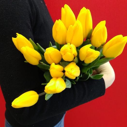 15 крупных жёлтых тюльпанов