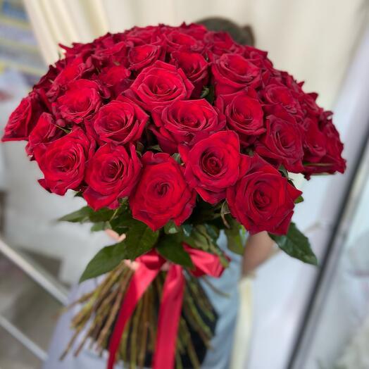 51 алая Роза букет «Чёрная Магия»