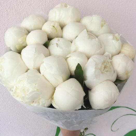 19 белоснежных пионов: букеты цветов на заказ Flowwow