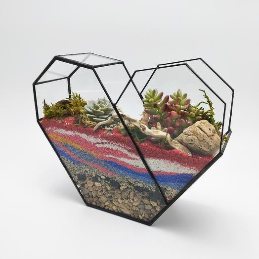 Флорариум в сердце с суккулентами