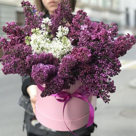 Огромная коробка сирени по супер цене: букеты цветов на заказ Flowwow
