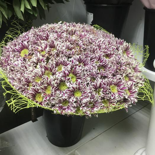 Хризантемовый рай: букеты цветов на заказ Flowwow